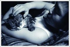 Farewell, Maowa (wuyeah) Tags: love animal socks cat furry peace sleep relationship farewell memory connection missed maowa