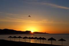 The beach. (Victoria.....a secas.) Tags: beach playa explore málaga besos malagueta perdonamidespistepulsaría2veceslaestrellita