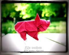 Un cochon - Barth Dunkan (Magic Fingaz) Tags: pig piglet cochon origamipig origamicochon