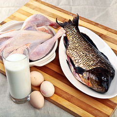 肉蛋鱼 (STORK_猜) Tags: 肉 鱼 牛奶 鸡 鸡蛋 鸡肉 蛋白质 营养平衡
