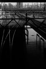 alto contraste, bajo contraste (chompa.cuak) Tags: blanco y negro old tren atocha tranquilidad futuro byn