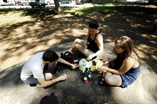 picnic, giant boulder, fontainebleau