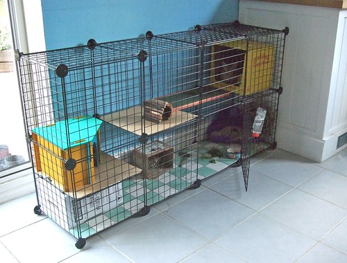 ***BLU Guide: Storage Cubes, Wire Grids, Cage Ideas In The UK*** | Bunny  Lovers Unite | Flickr
