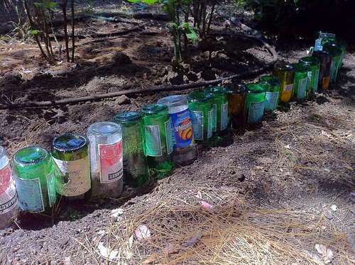 Bottle Garden Edging