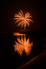 Fiery Palm (sandy.redding) Tags: california fireworks lakeisabella