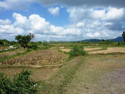 Indo 11-Lombok-Kuta (18)