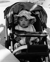 Sara's Birthday April 13 2014 TriX (S Migol) Tags: blackandwhite film monochrome analog pentax birthdayparty scan 135 greyscale xtol11 trix400 pentaxlx smigol smcpk50mmf12 stephenmigol copyright2014