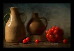 Cherry bowl (Rashmi Rai) Tags: stilllife texture fruits cherries memoriesbook