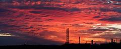 The Good Oil. BP Refinery, Port of Brisbane Australia (nielsen_tony) Tags: omdem5 olympus brisbane australia sunset sunrise