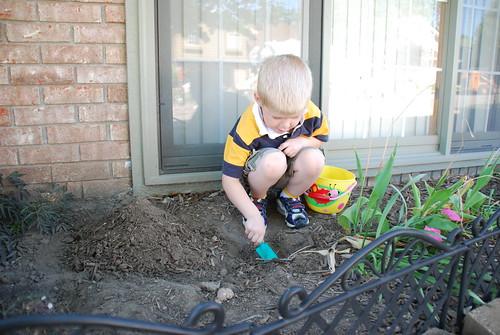 Dirt Digger
