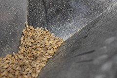 Barley - Bread making machines now