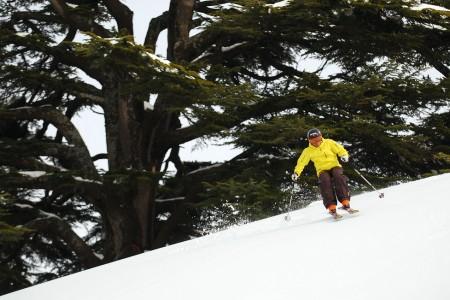 Libanon - lyžování ve stínu cedrů