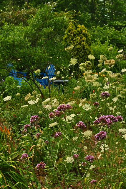 JoEllen's Garden (9)