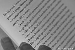 Entre la vida y la muerte (sairacaz) Tags: life death book libro muerte vida lectura isabelallende tamron70300mm betweenlifeanddeath canoneos550d mygearandme entrelavidaylamuerte elcuadernodemaya