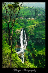 Devon Falls.... (Bhagis Photography) Tags: travel mountain tree green nature landscapes waterfall rainbow scenery asia scenic falls hills lanka devon srilanka ceylon roads southeast foliages momentumcontestfreshwater momentumcontestfreshwater