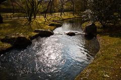 Creek in the japanese garden (Michael Stoop) Tags: sun reflection water creek garden japanese spring rocks hasselt canon5d backlit waterscape 24105l canon24105mmf4lisusm japansetuinhasselt