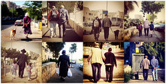 walking (judi333) Tags: street morning dogs collage walking women father grandfather streetshots bodylanguage elderly  following