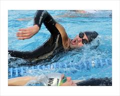 Triathlon Treviso 2012 (kilometro 00) Tags: italy piscina triathlon nuoto 2012 treviso citt uomini luoghi veneto stagione triathlontreviso