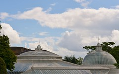 Kibble Palace (Michelle O'Connell Photography) Tags: park public glasgow victorian greenhouse glasshouse westend greatwesternroad botanicgardens queenmargaretdrive glasgowbotanicgardens kibblepalace glasgowscotland michelleoconnellphotography