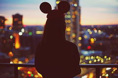 Mickey Mouse Ears (Amanda Mabel) Tags: city sunset portrait silhouette night mouse lights twilight view bokeh sydney australia mickey mickeymouse amandamabel