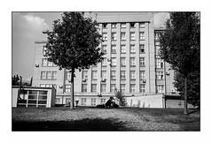Bratislava (Punkrocker*) Tags: leica m7 summicron c 40mm 402 film kodak trix 400 nb bwfp street city people bratislava slovaquie slovakia travel