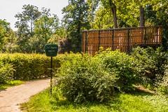 Irrgarten Schnbusch (mrocek) Tags: 2013 bayern deutschland unterfranken aschaffenburg aussichtsplattform busch englischer garten landschaft spas fun irrgarten panoramio776954392798490
