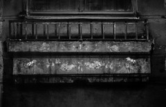 gloomy urban scene ( ) Tags: gloom monochrome blackandwhite window plant balcony urban city street melancholy impression prettylittlehorse