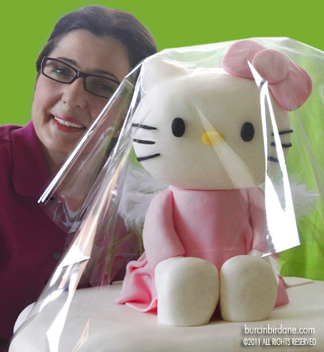 kitty3a