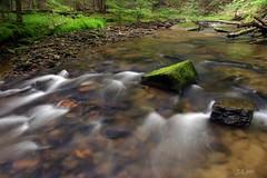 Browns run (J-Parkes) Tags: green creek stream pentax pennsylvania pa warren trout polarizer anf salmonoid brooktrout da1855 wildtrout k200d