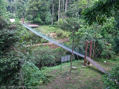 hanging bridge spanning across Sungai Maliau R0012072 copy