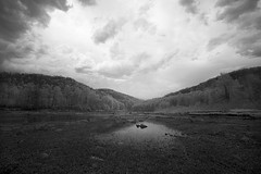 Toward the Canyon (DRCPhoto) Tags: canon westvirginia infrared 5d 1740mm cheatriver irconverteddslr
