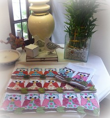PaNoS De PrAtO CoRuJaS (DoNa BoRbOlEtA. pAtCh) Tags: handmade application owl applique corujas galinhas aplicao panosdeprato bordadomo donaborboletapatchwork denyfonseca