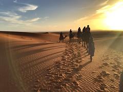 In Africa (yanitzatorres) Tags: aureola amanecer rayosdesol rayos luz camellos caravana dromedarios frica sahara morocco marruecos dunas desierto cielo arena sol