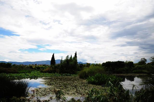 Baofeng Wetland