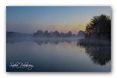 Mist rising (polassery) Tags: ireland mist sunrise easter landscape rising 2014 laois