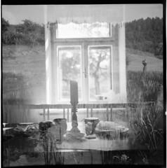 IMG_0003 (peter gogol) Tags: bw 120 6x6 film analog medium format 100 fomapan ljubitel