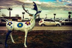 What he sees (Melissa Maples) Tags: cameraphone flowers sea sculpture art apple water turkey asia mediterranean trkiye deer antalya iphone  iphone4