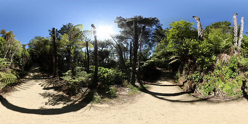 Cathedral Cove Walkway Panorama