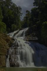 Takah Tinggi Taman Negara Endau Rompin Selai (nurshammamat) Tags: sky sun art beautiful beauty sunrise nationalpark amazing nice nikon national slowshutter stunning batupahat bigstopper nd500