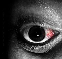 Silent Eye ©