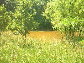 Year 'round pond