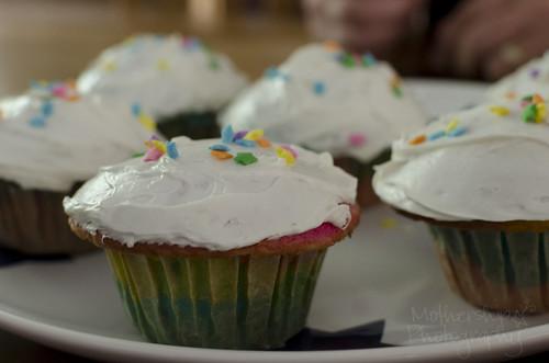 纸杯蛋糕6