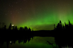 Northwoods Northern Lights (Bryan Hansel) Tags: usa lake green minnesota venus mn northernlights auroraborealis northwoods borealforest treslepinerd