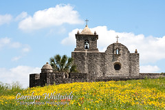Presidio La Bahia in Springtime