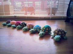 1546118_10152573824494782_1185844487_n (nomnomknitting) Tags: manchester knitting turtles mochimochi