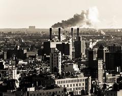 Animals (lothar1908) Tags: city usa newyork building industry skyline brooklyn america canon blackwhite comignolo smoke horizon case smoking 70200 architettura città fumo esterno orizzonte contrasto puntodivista 5dmarkiii ef7020028lisii infinitexposure