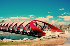 photo 4 (iamericuson) Tags: bridge calgary lunchtime photowalk fujifilm beautifulday peacebridge niceweather xt1 xf35mm