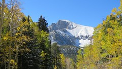 Mountain and Aspen with Fresh Snow (claypeoples) Tags: landscape scenery snow winter fall color foliage aspen yellow mountain peak great basin national park nevada wheeler