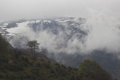snowy and cloudy mountains (Ren Mouton) Tags: trees mist mountain snow weather clouds bomen sneeuw wolken greece macedonia bergen weer griekenland prespes agiosgermanos  macedoni