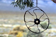 """Kunst am Baum"" (Proteus_XYZ) Tags: southafrica nationalpark südafrika westerncape overberg karoo kunstambau kunstambaum tankwa westlichekapprovinz karru paulshoekcottage"